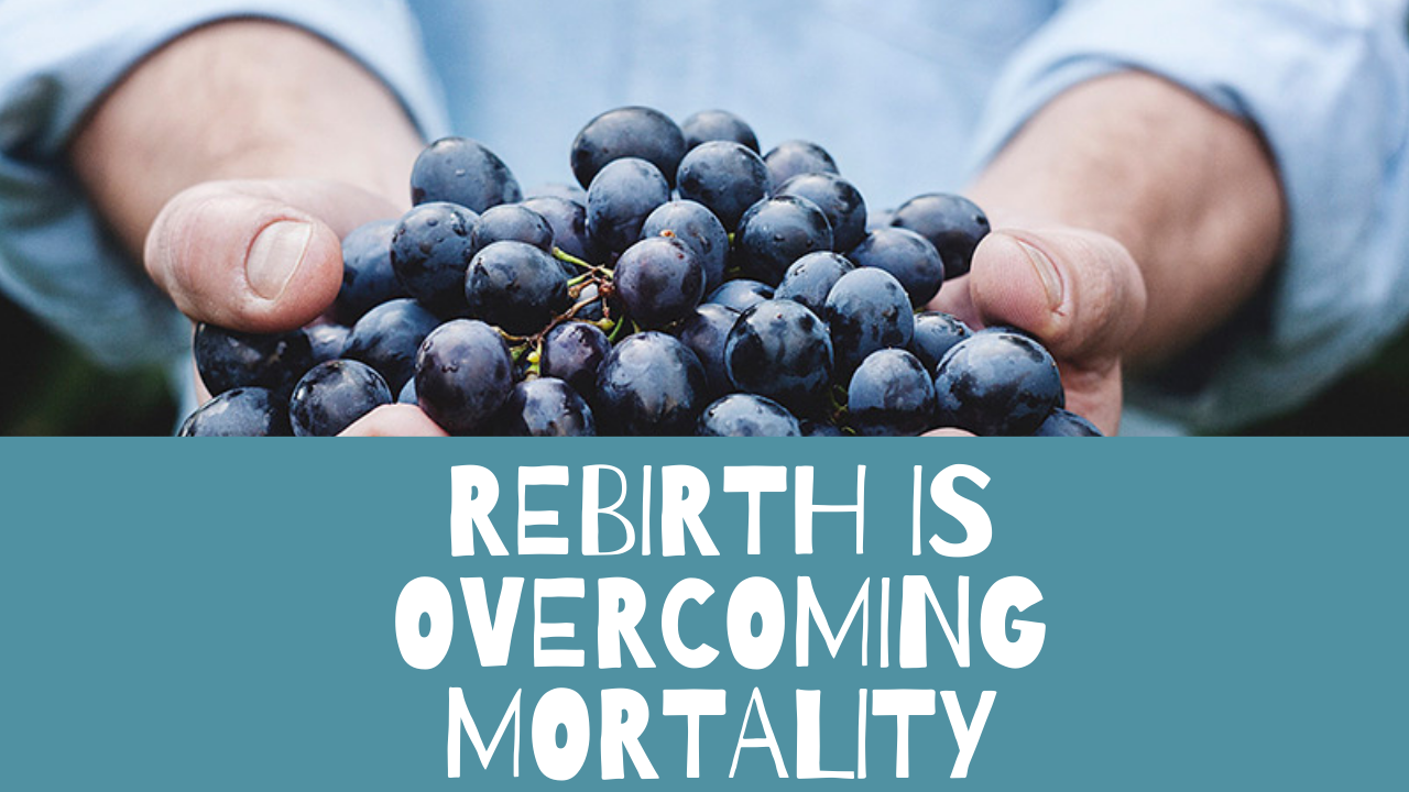 Rebirth - What Easter means to me